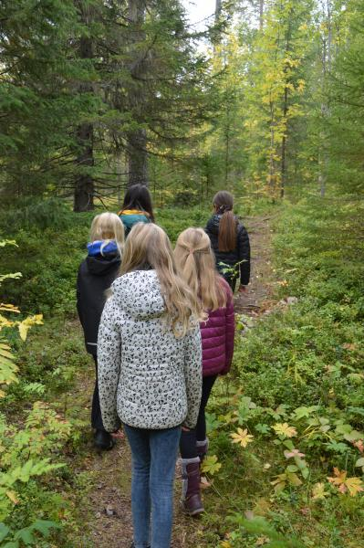 Students exploring the forest